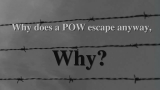 Book trailer: Why? #2 (alternate video)